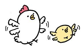 あきらめない鳥